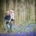 Where to see Bluebells near Winchester
