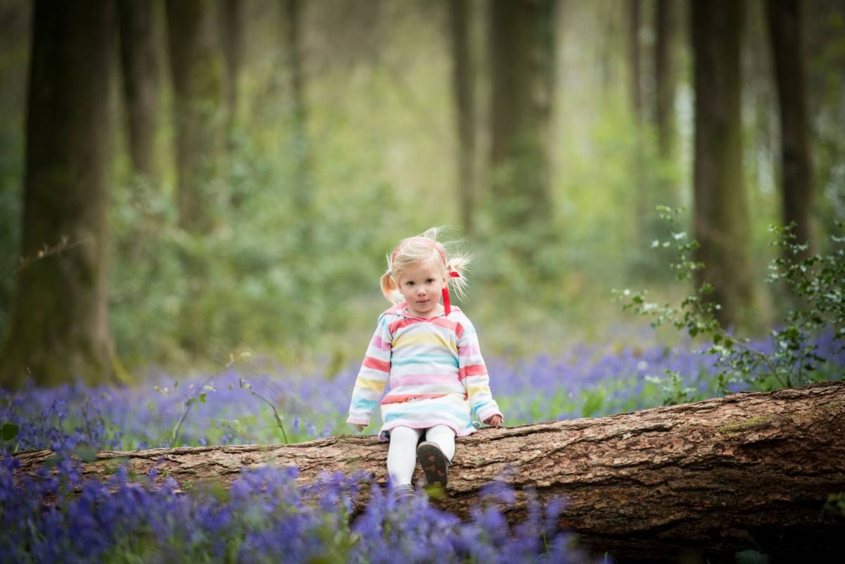 Bluebell Photoshoot Micheldever Woods